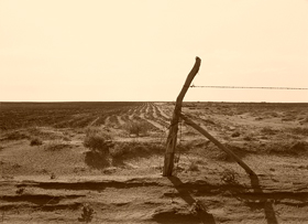 Dust Bowl Days near Dalhart, Texas