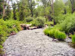 Tolby Creek, Colfax County, New Mexico
