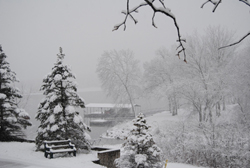 Snow near Warsaw MO, Dec 2012, Dave Alexander