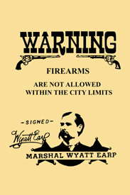 Warning - No Firearms Allowed Poster