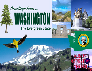 Greetings From Washington Custom Postcard