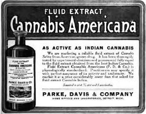 Cannabis Fluid Extract