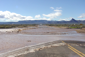 Flooded Oatman Highway