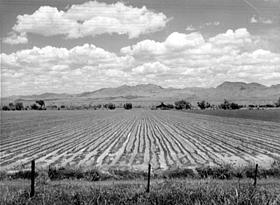 San Simon Valley, Arizona
