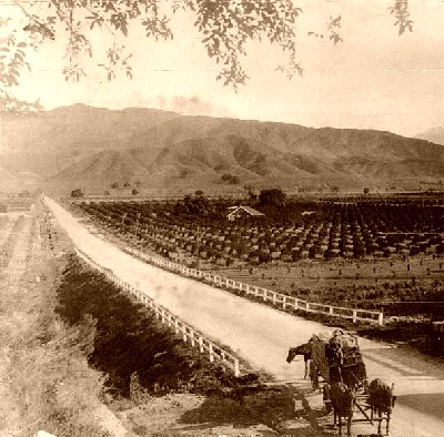 San Gabriel Valley in 1900