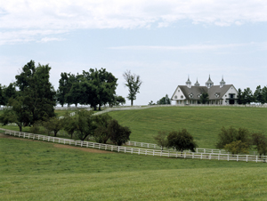 A Blue Grass Horse farm in Kentucky