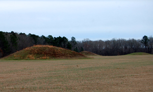 Pharr Mounds, Mississippi