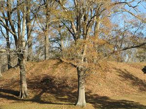 Pocahontas Mound, Mississippi