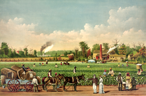 A cotton plantation in Mississippi by Currier &amp; Ives, 1884.