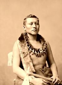 Osage Chief Black Dog