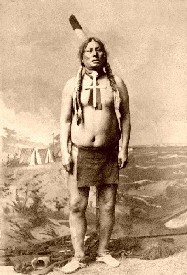 Chief Gall, 1885