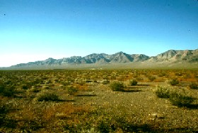 Northern Nevada Desert
