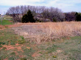 Isaac Black's grave in Alva, Oklahoma