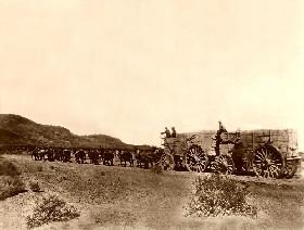 20-mule team, Death Valley, 1890