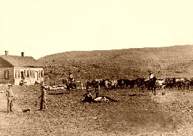 Branding Cattle in 1891