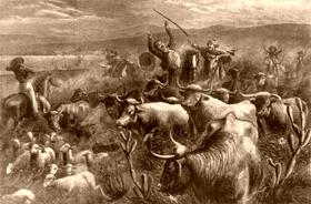Rustling cattle