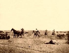 Cowboy Thrown