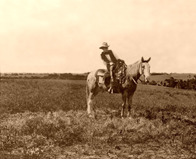 Erwin E. Smith, cowboy photographer, 1908