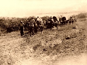 Wagon Train in 1847