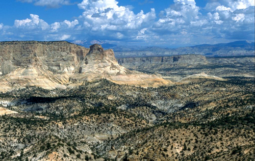 White Cliffs in the Grand Staircase/Escalante National Monument (BLM photo)