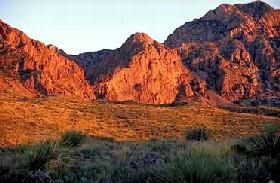 Rockhound State Park, New Mexico