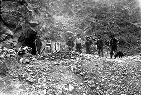 Arizona Miners