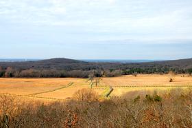 Pea Ridge Battlefield Overlook