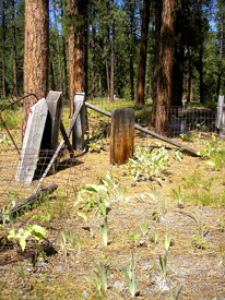 Gibbonsville, Idaho Cemetery