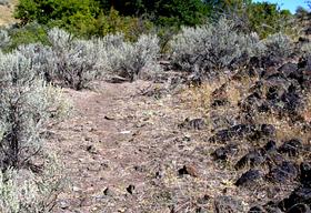 Rocky Trail on Jeffrey-Goodale Cutoff