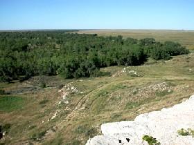 Santa Fe Trail Ruts in Kansas