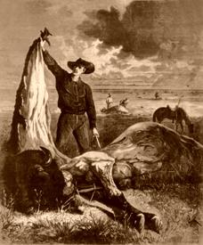 Slaughtered Buffalo