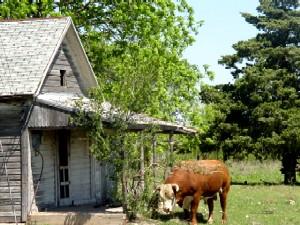 Old Mobeetie, Texas
