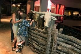 Texas Longhorns Exhbiti at TSHM