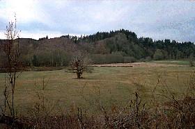 Wynooche Valley, Washington