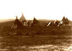 Apache Jicarilla camp, 1905, Edward S. Curtis