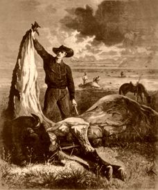 Slaughtered Buffalo, 1874