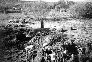 Old gravesite