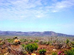 Cerbat Range, Arizona