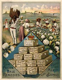 Cotton bale medicine, 1888
