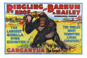 Ringling Brothers and Barnum Bailey Circus