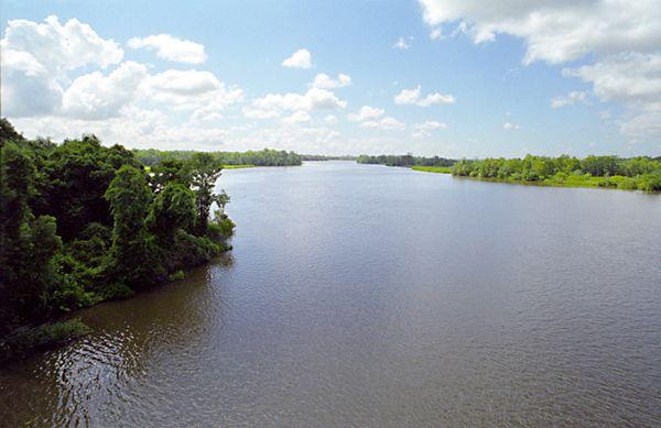 Altama River, courtesy Georgia Almanac