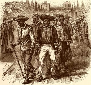A slave coffle passing the U.S. Capitol.