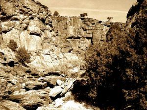 Black Jack Canyon, New Mexico