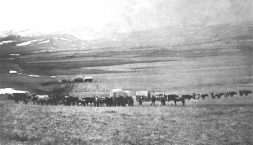 A wagon train on the Bozeman Trail, 1883