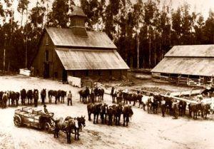 Irvine Ranch, California