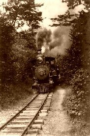 A train through the woods
