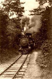 A train through the woods