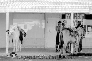 Niland, California Horses, Kathy Weiser