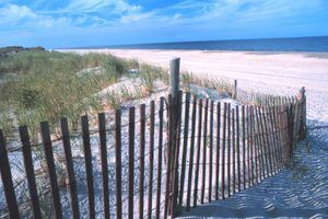 Rehoboth Beach Delaware William Folsom-noaa