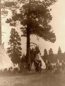 Salish Dance, Edward S. Curtis, 1910